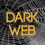 Dark web words over spiderweb